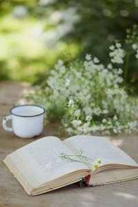 White enamel, chamomile, and a book