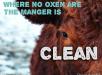 oxen Prov 14.4