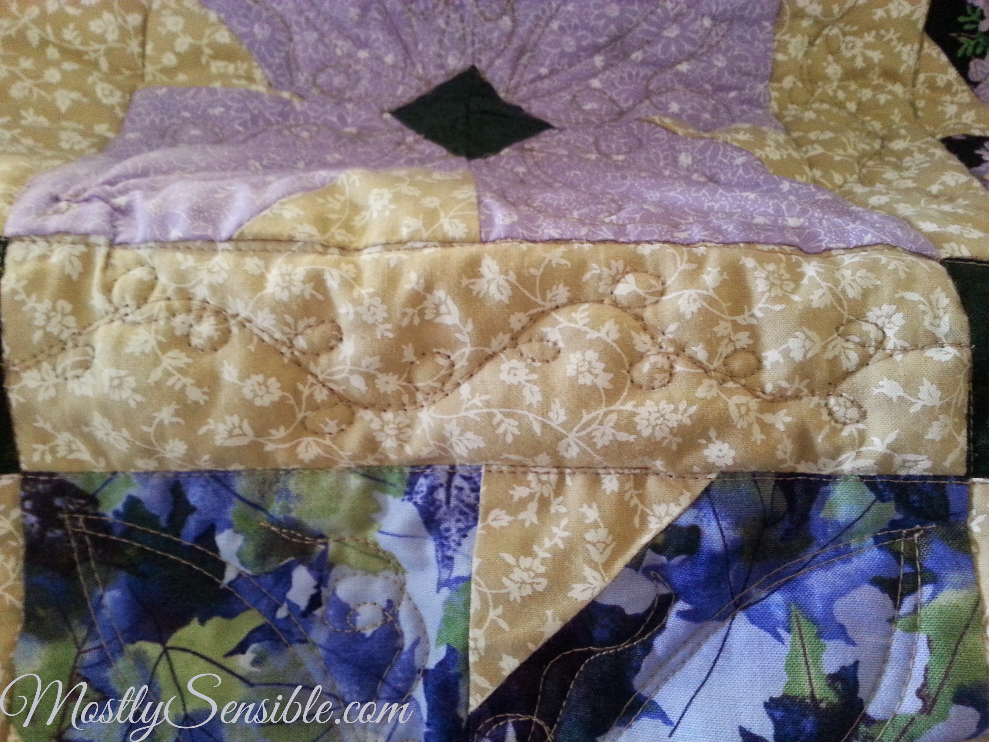 Free Motion Quilting Designs For Sashing : Twin African Violet Quilts
