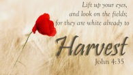 John 4.35