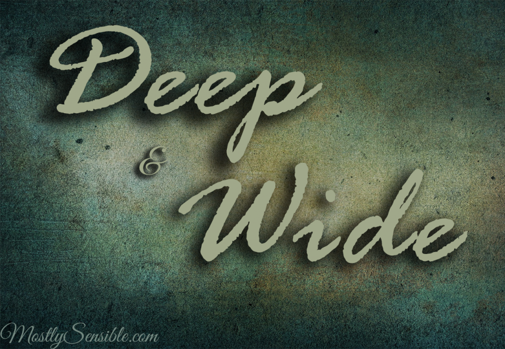 Deep and Wide2