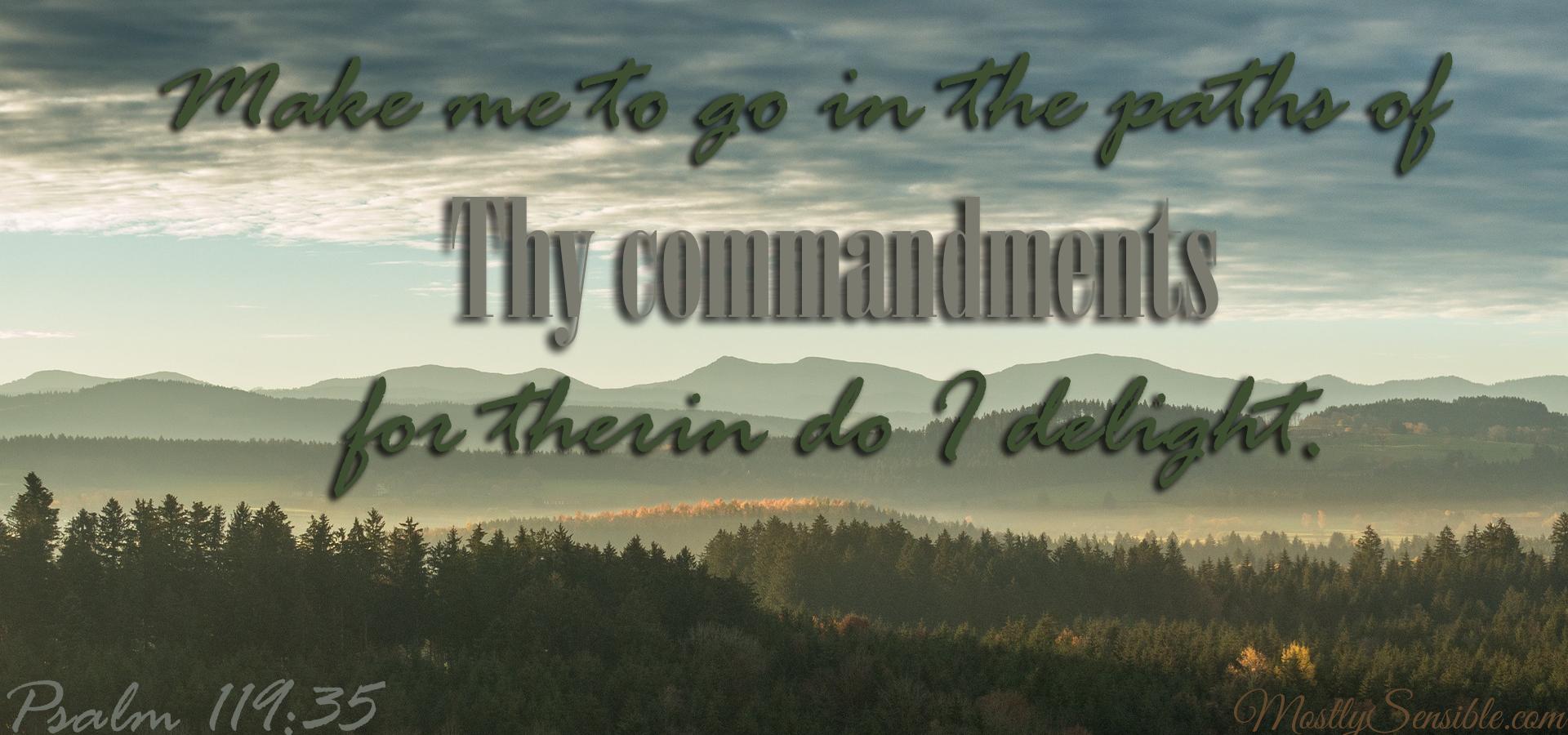 Psalm 119.35