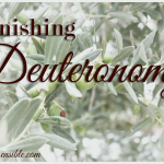 Finishing Deuteronomy